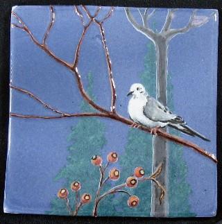 Twilight Dove
